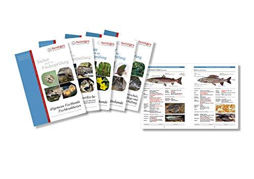 Grundausstattung Fisch - Heintges - Sicher durch die Fischerprüfung