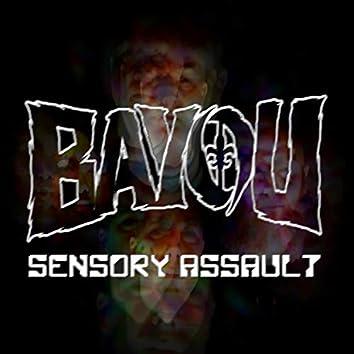 Sensory Assault