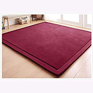 ZAIPP Bedroom,Thickening Coral Velvet Baby Safe Carpets,Baby Nursery Crawling Rug for Living Room,Super Soft Children Play Mat Burgundy