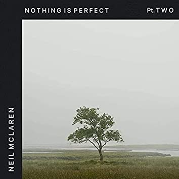 Nothing Is Perfect, Pt. 2
