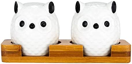 Xena 3 Piece Cute Retro Elegant Ceramic Owl Salt and Pepper Shaker Bamboo Base Set 6 x 3 x 2 product image