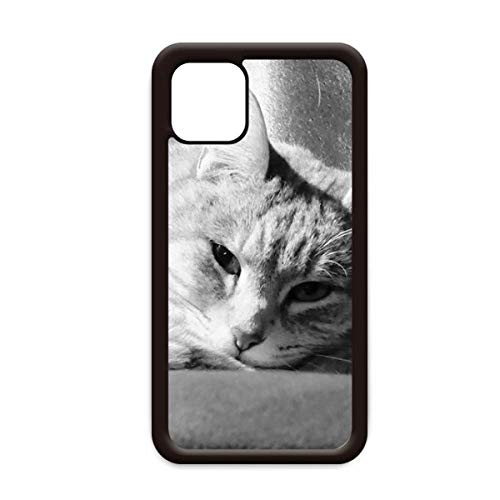 Animal puro gato foto foto para iPhone 12 Pro Max cubierta para Apple mini móvil Shell