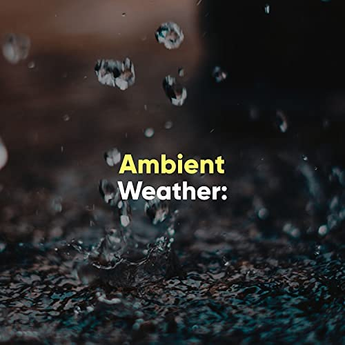 Wave Ambience
