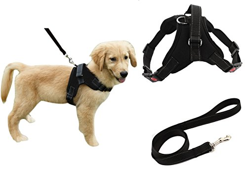 Heavy Duty Adjustable Pet Puppy Dog Safety Harness with Leash Lead Set Reflective No-Pull Breathable Padded Dog Leash Collar Chest Harness Vest with Handle for Small Medium Large Dogs Training Walking