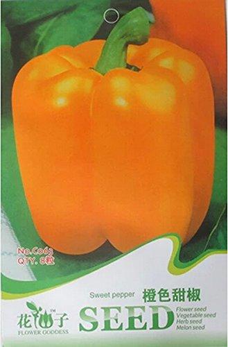 Graines d'orange douce Poivron, emballage d'origine, 8 graines / paquet, rares légumes Heirloom C063