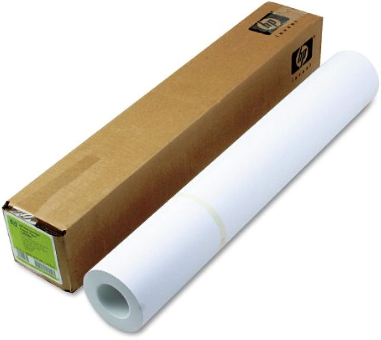 HP C6029C - Heavyweight Heavyweight Heavyweight Coated Paper - 24in, 610mm x 30.5m - 130gsm B00HWAB8AM  | Lebendige Form  d26108