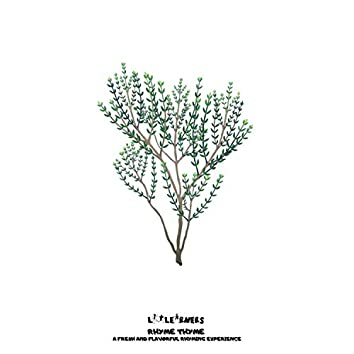 Rhyme Thyme: Long Vowel Sounds I