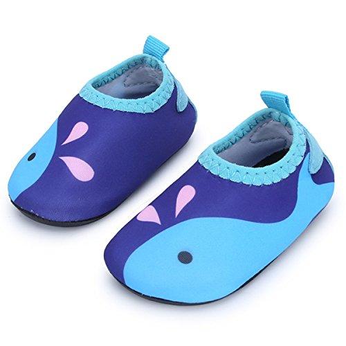 JIASUQI Baby Outdoor Quick Dry Aqua Barefoot Beach Walking Water Shoes for Swim River Pool,Blue Fish 6-12 Months