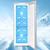 CHiQ FSD166NE4 Tiefkühlschrank 166 L | Gefrierschrank mit Dynamic Cooling-Funktion | LED-Beleuchtung | Wechselbarer Türanschlag | Schwarzer Edelstahl | A+| Sehr leise 42db - 10