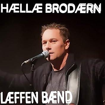 Hællæ Brodærn (Norwegian Aviici Cover)