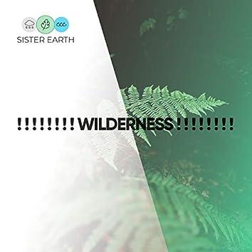 ! ! ! ! ! ! ! ! Wilderness ! ! ! ! ! ! ! !