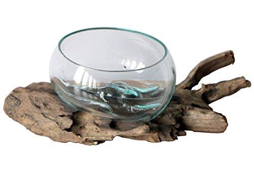 Geschenk Deko Gamal Wurzelholz B-Ware Glas Ø 16-18 cm Wurzel Holz Teakholz Vase Schale M