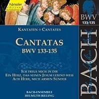Bach Cantatas BVW 133-135 (2000-06-27)