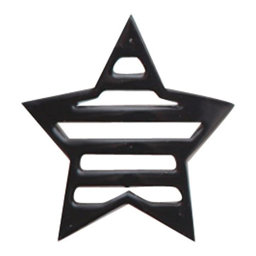 記述するサリーファシズムリトルプリティー ネイルアートパーツ 星ボーダー L ブラック 10個