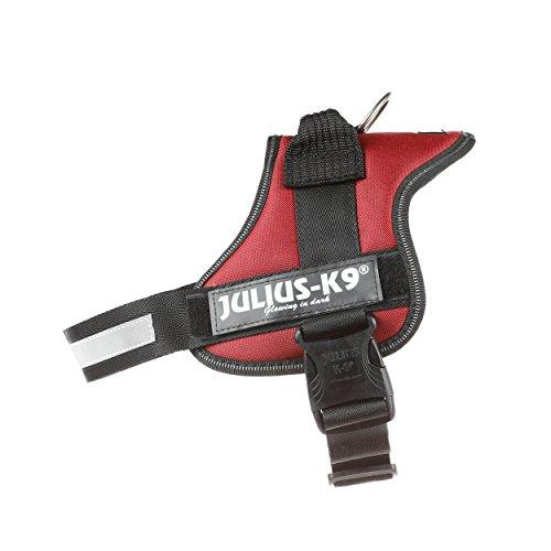 Julius-K9, 162BE-1, Powerharness,...