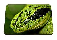 26cmx21cm マウスパッド (ヘビの顔の目は危険を発見) パターンカスタムの マウスパッド
