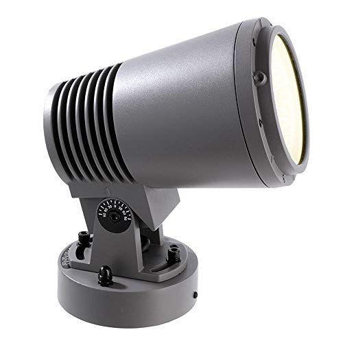 kapegoled Fond/murale/Plafonnier, Power Spot Tauri 40, AC 110–240 V/50–60 Hz, 182 Ma Gris 40 W, Blanc chaud, EEK?: A