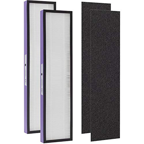 Drolma FLT5250PT Size C True HEPA Replacement Filter With Pet Pure Treatment , Compatible with GermGuardian AC5250PT, AC5000E, AC5300B, AC5350W, AC5350B, CDAP5500 and More,2 Pack