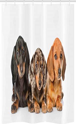 ABAKUHAUS Dackel Schmaler Duschvorhang, H&e Lays, Badezimmer Deko Set aus Stoff mit Haken, 120 x 180 cm, Dunkle Taupe Grau Taupe Perser orange