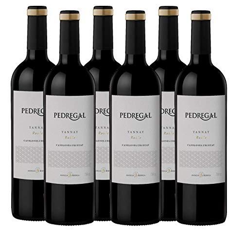 Atlantik Weine, Weinpaket Pedregal Tannat 2017, Rotwein aus Uruguay, Südamerika, trocken (6 x 0,75l)