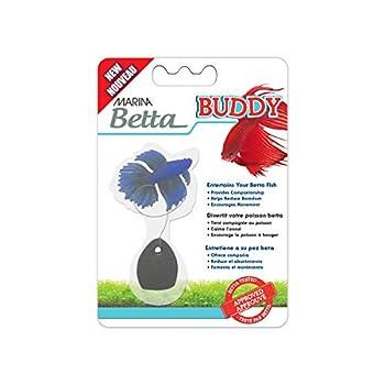 Best betta fish blue Reviews