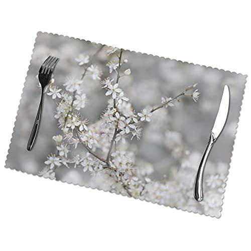 Placemats de flores de cerezo para mesa de comedor, juego de 6 piezas de tela lavable, para decoración de mesa familiar, restaurante o boda