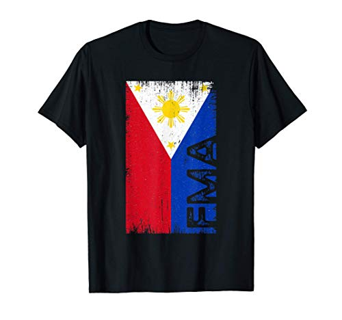Filipino Martial Arts FMA Arnis Kali...