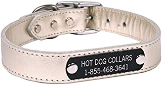 leather dog collar with engraved name plate