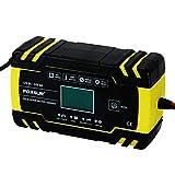 MorNon 8 Amp Intelligent Car Battery Charger Pulse Repair Starter 12V 24V AGM GEL
