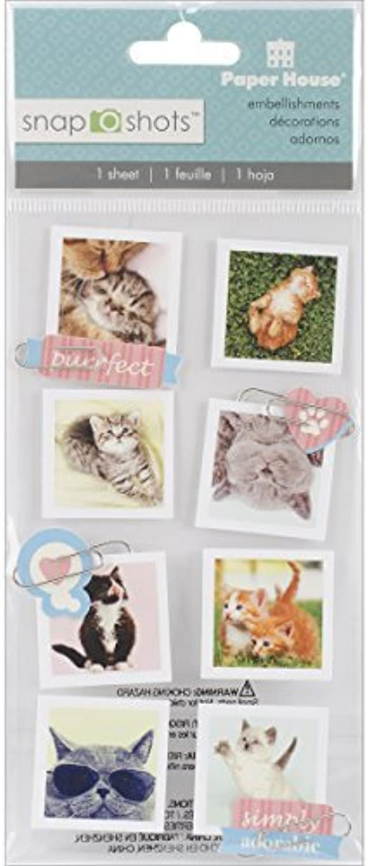 Paper House Productions STSS-0014E Cats Snapshot Stickers (3-Pack) by by by Paper House Productions B01KBB0UEI | Am praktischsten  94303f