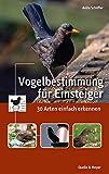 Vogelbestimmung für Einsteiger: 30 Arten einfach erkennen