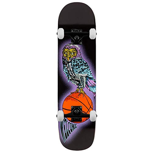 Welcome Skateboards Hooter Shooter su Bunyip Mid - Skateboard completo, 8,25', colore: Nero