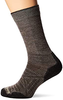 Smartwool PhD Outdoor Light Crew Socks, Large, Taupe