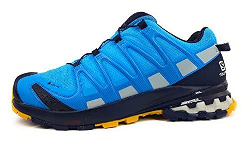 Salomon XA Pro 3D V8 Gore-Tex (impermeable) Hombre Zapatos de trail running, Azul (Hawaiian Ocean/Night Sky/Arrowwood), 40 EU