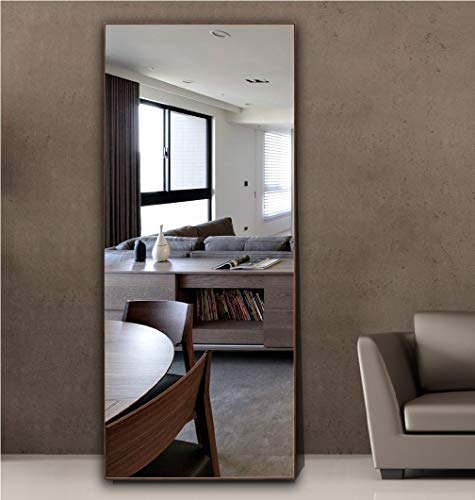 Hans&Alice Full Length Standing Mirror (Brown, 65'x24')