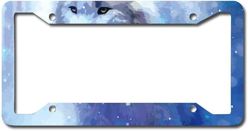 SHARONKIE License Plate Recommendation Frame Metal CosmicWolf Seattle Mall Pl Auto