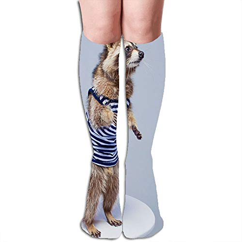 Raccoon Vest Isolated On White Adorable Miscellaneous Compression Socks for Women&Men - Best Medical for Running Athletic Flight Travel Circulation Recovery,19.68 Inch