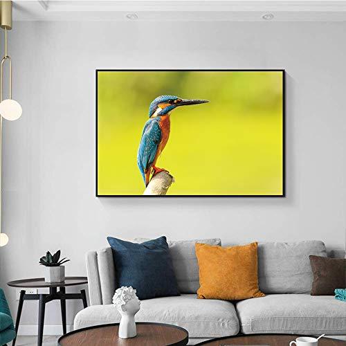 Dier canvas poster kuif papegaai vogel print schilderij wall art nordic decoratie woonkamer foto poster en print frameloze schilderij 40x60 cm