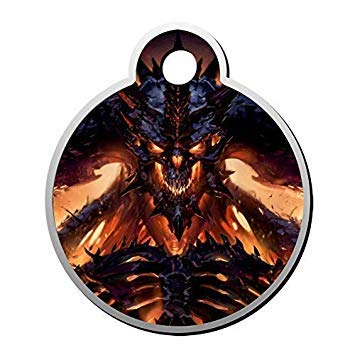 3.5x3cm Funny Round Shape Pet Tag,Fire Dragon Skeleton Skull Personalised Pet Id Tag Engraved,Pet Id Tag for Dogs and Cats,Metal Pet Tag,Novelty Gifts Idea
