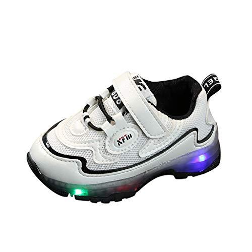 LED Schuhe Kinder Leuchtend Sportschuhe Led Farbwechsel Sneaker Turnschuhe für Mädchen Jungen Piebo Unisex Low Top Atmungsaktives Mesh Laufschuhe Gymnastik Blinkschuhe Outdoor Freizeit Tennisschuhe