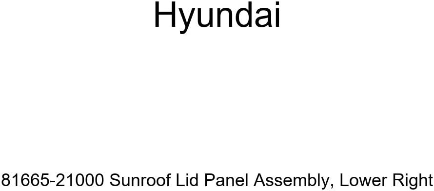Ranking TOP20 Genuine Hyundai 81665-21000 Sunroof Lid Ri Lower Panel Assembly Outlet SALE
