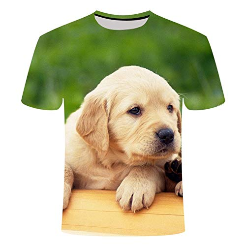 LKFTH 3D Printed Pet Dog T-Shirts Labrador Retriever Large Size T-Shirt Pattern Fashion Casual Personality Short Sleeve M As Show C
