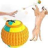 Nicejoy Perro Fetch Ball, Pet Masticar Juguete lanzando Molar Juguete Automático Telescópico Cuerda Transporte Bolas de Entrenamiento Toys Ball para Puppy (Orange)