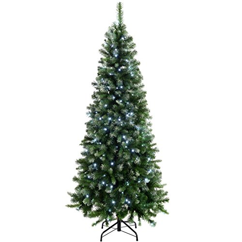 WeRChristmas Pre-Lit Slim Frosted Christmas Tree with 200 White LED Lights, 6 ft/1.8 m, Green