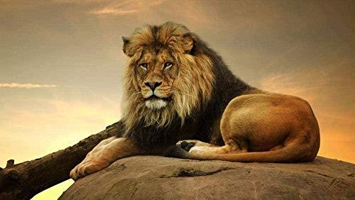 CHDBB 1000 Piezas de Rompecabezas para Adultos El Rey león en la Roca para niños Juegos de Rompecabezas para la Familia  Juego Educativo