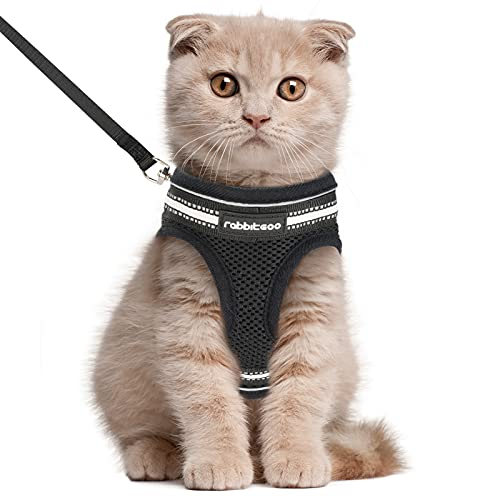 rabbitgoo Cat Harness and Leash Set for Walking Escape Proof, Adjustable Soft Kittens Vest with Reflective Strip for Cats, Comfortable Outdoor Vest ,...