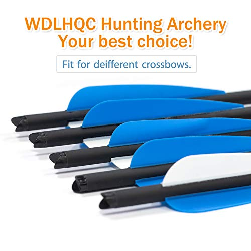 WDLHQC Arrows Archery Practice Hunting Arrows with Removable Tips