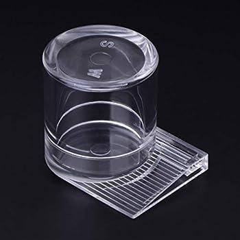 RG-FA Mangeoire à fourmis en acrylique transparent pour nids de fourmis et insectes, 2 tailles