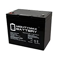 Mighty Max Battery 12V 75Ah Internal Thread Replacement Battery for Powerware FC 15KVA Brand Product