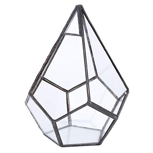 Terrario geométrico irregular de cristal poliedral, terrario, terrario, maceta, maceta, decoración paisajís
